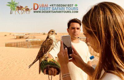 A Typical Evening Desert Safari Experience in Dubai